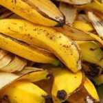 Kur galima panaudoti banano žieveles?