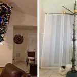 Kai katės kariauja su Kalėdų eglutėmis
