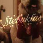 Kalėdinę dainą pristatantys garsūs Lietuvos dainininkai: Stebuklas